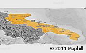 Political Shades Panoramic Map of Puglia, desaturated
