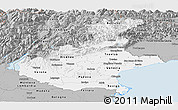 Gray Panoramic Map of Veneto