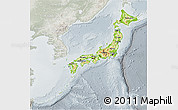 Physical 3D Map of Japan, lighten, semi-desaturated
