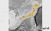 Political Shades 3D Map of Japan, desaturated