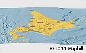 Savanna Style Panoramic Map of Hokkaido
