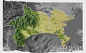Satellite 3D Map of Kanagawa, desaturated