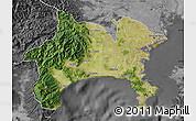 Satellite Map of Kanagawa, desaturated