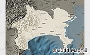 Shaded Relief Map of Kanagawa, darken