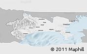 Gray Panoramic Map of Kanagawa, single color outside
