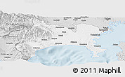 Silver Style Panoramic Map of Kanagawa