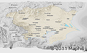 Shaded Relief Panoramic Map of Kanto, desaturated