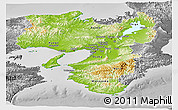 Physical Panoramic Map of Kinki, desaturated