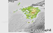 Physical Panoramic Map of Kyushu, desaturated