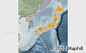 Political Shades Map of Japan, semi-desaturated