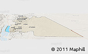 Shaded Relief Panoramic Map of Amman, lighten