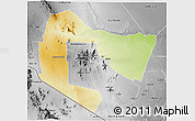 Physical 3D Map of TSAVO E&W N. PARK, desaturated