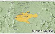 Savanna Style 3D Map of NAIROBI