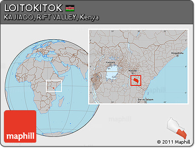 Gray Location Map of LOITOKITOK, within the entire country