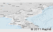 Silver Style Panoramic Map of North Korea