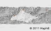 Gray Panoramic Map of Long