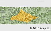 Savanna Style Panoramic Map of Long