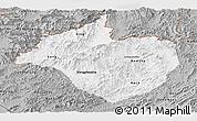 Gray Panoramic Map of Namtha