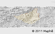 Shaded Relief Panoramic Map of Sing, desaturated