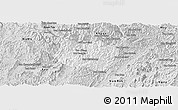 Silver Style Panoramic Map of La
