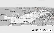Gray Panoramic Map of Saravane