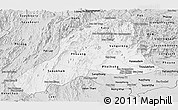 Silver Style Panoramic Map of Vientiane