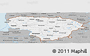 Gray Panoramic Map of Lithuania