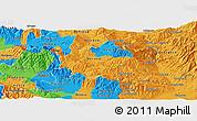 Political Panoramic Map of Berovo