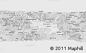 Silver Style Panoramic Map of Delcevo