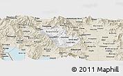 Classic Style Panoramic Map of Murgasevo