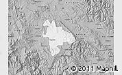 Gray Map of Negotino