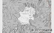 Gray Map of Radovis