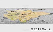 Satellite Panoramic Map of Mopti, desaturated