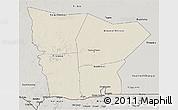 Shaded Relief 3D Map of Hodh el Gharbi, semi-desaturated