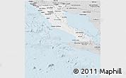 Silver Style Panoramic Map of Baja California