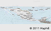 Gray Panoramic Map of Mexico