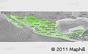 Political Shades Panoramic Map of Mexico, desaturated
