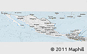 Silver Style Panoramic Map of Mexico