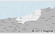 Gray 3D Map of Dzilam Gonzalez