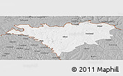 Gray Panoramic Map of Edinet