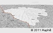 Gray Panoramic Map of Ungheni