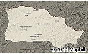 Shaded Relief Map of Selenge, darken