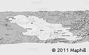 Gray Panoramic Map of Fes