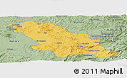 Savanna Style Panoramic Map of Fes