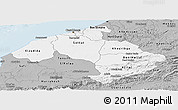 Gray Panoramic Map of Centre