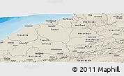Shaded Relief Panoramic Map of Centre
