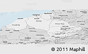 Silver Style Panoramic Map of Centre