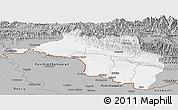 Gray Panoramic Map of Narayani