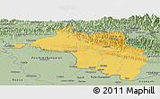 Savanna Style Panoramic Map of Narayani