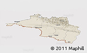 Shaded Relief Panoramic Map of Narayani, cropped outside